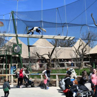 Zoo opens two new exhibits